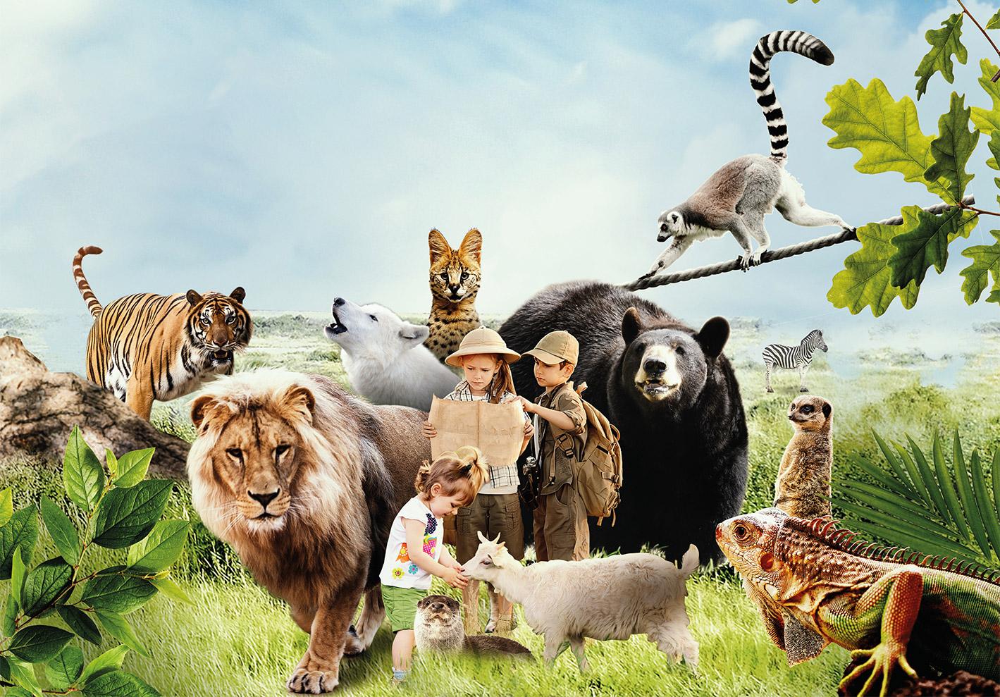 TOus les animaux